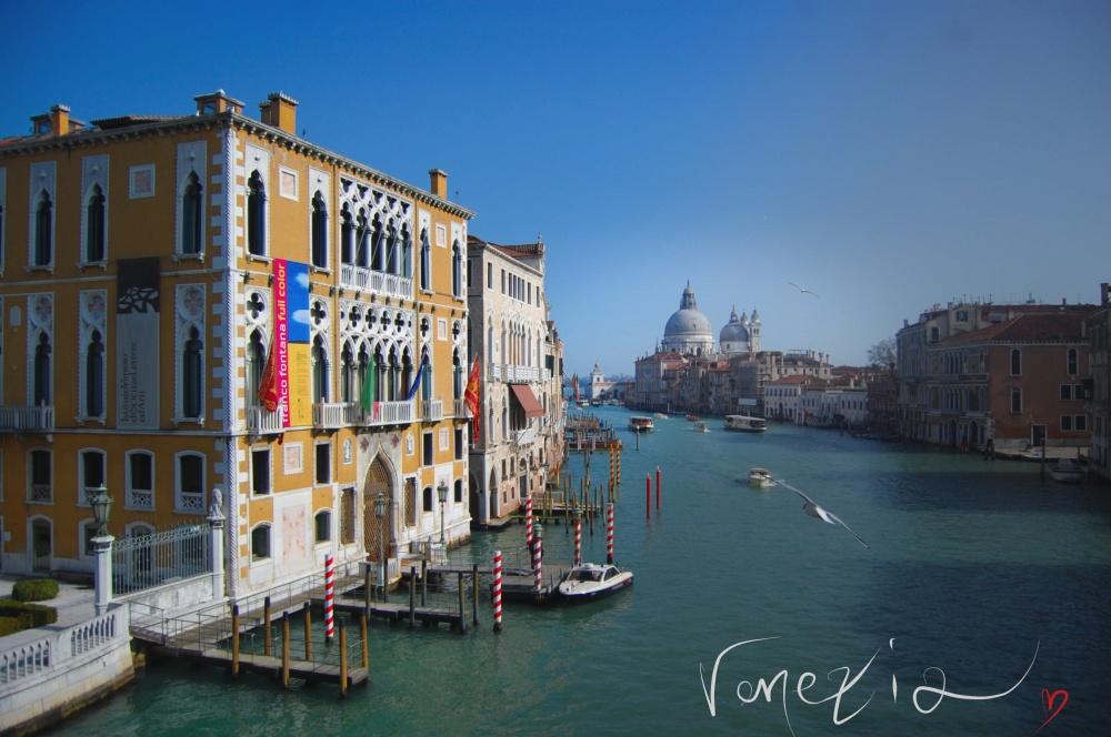 venezia love